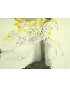 Salvador Dalì, Pegaso, litografia, 56x36 cm tratta da Les Chevaux de Dalì, 1970-72