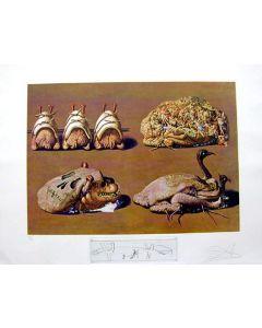Salvador Dalì,  Princely Plier Caprices, litografia, 75x55 cm tratta da Les Diners de Gala, 1971