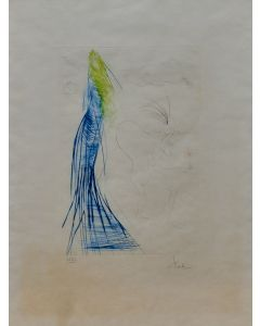Salvador Dalì, Frocin il nano cattivo, acquaforte a colori, 70x55 cm, 1970