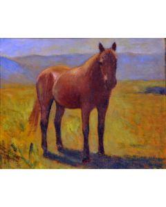Giovanni Malesci, Cavallo, olio su tela, 34x27 cm, 1940
