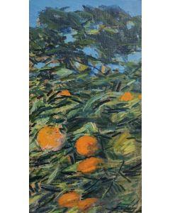Giovanni Malesci, Arance sull'albero, olio su tela, 42x23 cm, 1967