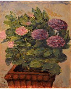 Giovanni Malesci, Ortensie, Olio su tela, 50x62 cm, 1967