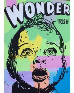 Andrew Tosh, Wonder, tecnica mista su tela, 50x70 cm