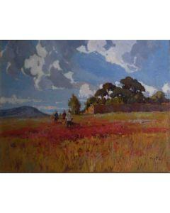 Angiolo Volpe, Papaveri, olio su tela, 80x50 cm