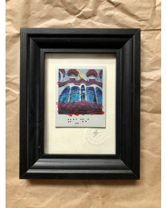 Alessandro D'Aquila, Gaudì, Polaroid, 12x17 cm