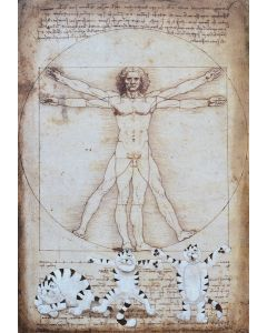 Franco Anselmi, Vetruvian aerobic gym, tecnica mista su compensato marino, 150x100 cm