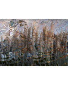 Norma Picciotto, Cerchi, fotografia con elaborazione digitale, 30x40 cm