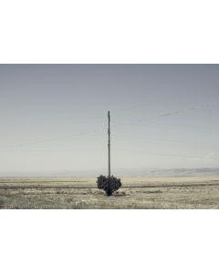 Stefano Zarpellon, Diretto al cuore, stampa fineart su carta cotone, 1/15, 60x43 cm
