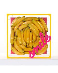 Erika Calesini, Banana box Smile, Cubo in plexiglas con tela e banane, scritta gommata, 45x45 cm, 2020