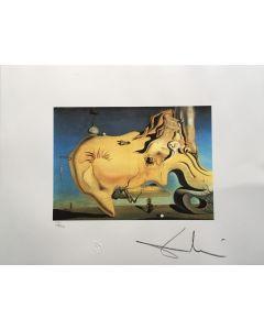 Salvador Dalì, Il grande masturbatore, litografia, 50x65 cm, 1988