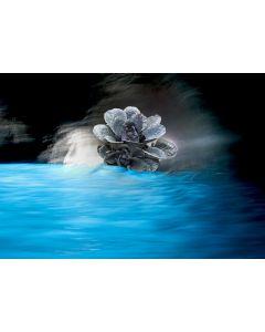 Norma Picciotto, Illuminazione, fotografia con elaborazione digitale, 30x40 cm