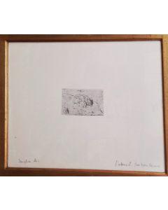 Giovanni Fattori, Cane accucciato, acquaforte, 7,5x14 cm (42x56,5 con cornice)