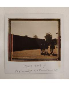 Maurizio Galimberti, Paris2008, Polaroid, 10x10,5 cm