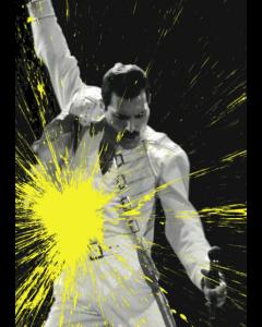 Julian T, Freddie Mercury, stampa digitale su PVC, 80x60 cm, 2015