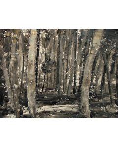Tiziana Vanetti, Wild 2, acrilico su tela, 80x100 cm