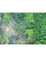 Norma Picciotto, Tutto è vanità e un correre dietro al vento, fotografia con elaborazione digitale, stampa su Elicobond, 100x70 cm