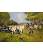 Carlo Domenici, Buoi al pascolo, olio su faesite, 69x49 cm