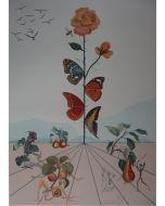 Salvador Dalì, Flordalì II, litografia a colori, 103x72,2 cm, 1981