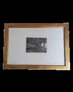 Giovanni Fattori, Gruppo di maiali, acquaforte, 13,5x18 cm (41x57 cm con cornice)