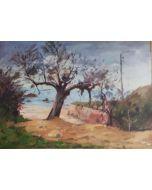 Angiolo Volpe, Tamerici, olio su tela, 50x70 cm